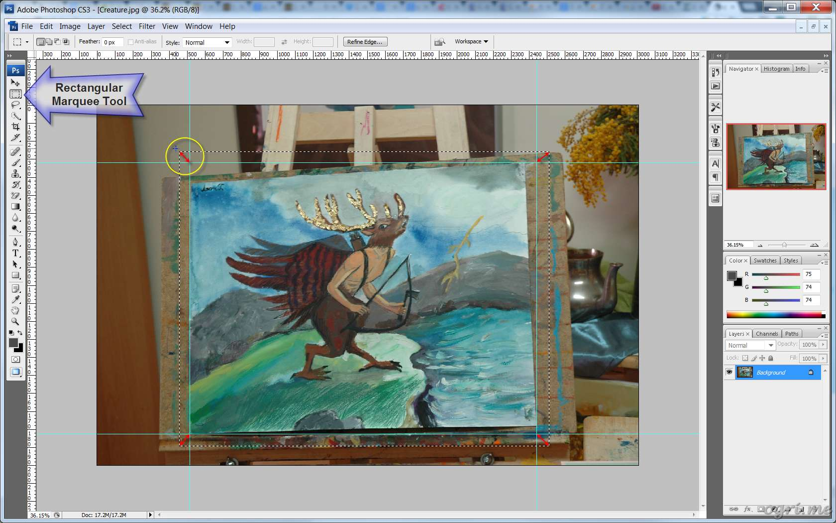ogri.me | Photoshop: Processing photos of paintings for online gallery #04